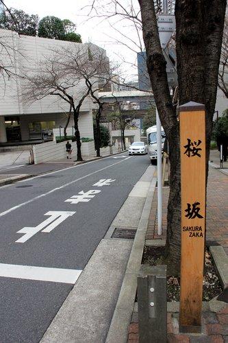 #桜坂標識.jpg