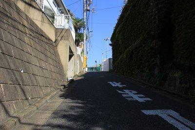 白秋・坂.jpg